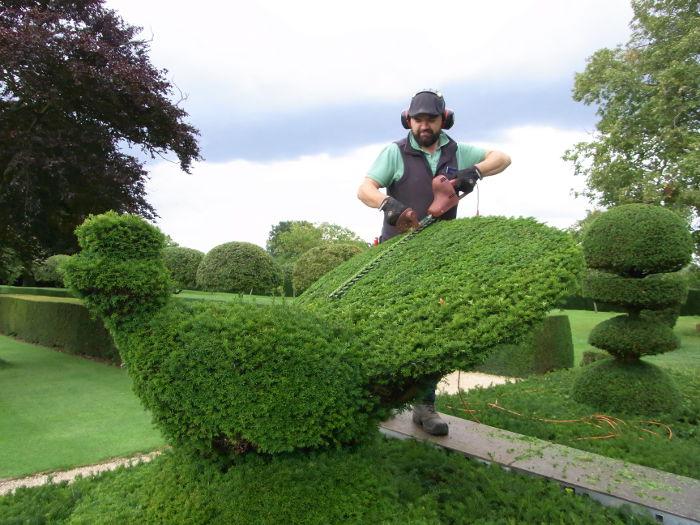 Topiary trim
